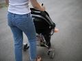 Mamičky v Bratislave sú zúfalé: Drogovo závislý muž ohrozuje ich deti s nožom v ruke
