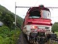 Desivá jazda vlakom smerujúceho do Levíc: FOTO V silnom daždi narazil do spadnutého stromu