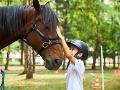 Keď kone pomáhajú liečiť