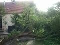 Popadané stromy museli riešiť hasiči už od včera