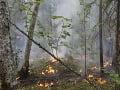Plocha hrozivých lesných požiarov na Sibíri ustupuje: Zmenšila sa o 10-tisíc hektárov