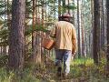 Hubár (†66) telefonoval manželke z lesa: Ak neprídem, zožral ma medveď! Vtipom privolal svoju smrť