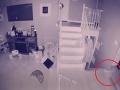 VIDEO z bezpečnostnej kamery odhalilo to, čo majiteľ domu nikdy nechcel vidieť: Čo to, preboha, je?