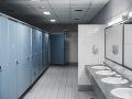 Policajt zbalil očitú svedkyňu, potom spáchal totálnu nemravnosť na WC