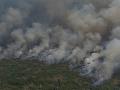 Požiare v Brazílii si vyberajú ďalšiu daň: Oheň ničí najväčšiu mokraď na svete