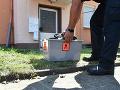 Panika v nemeckom meste: Pátrajú po jedovatej kobre, ktorá unikla z bytu