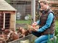Žena šla do kurína pozbierať vajcia: Už sa odtiaľ nevrátila živá, hrôzostrašná smrť
