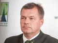 Štátny podnik Lesy SR môžu aplikovať v lesoch v Bratislave chémiu: Aktivisti ich žalujú