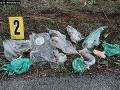 Brutálny prípad, z ktorého mrazí: FOTO Pri Nových Zámkoch našli 316 zvieracích končatín