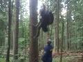 FOTO Paraglajdista uviazol v stromoch: Pomôcť mu museli hasiči a vrtuľník