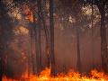 Grécko bičujú lesné požiare: Prírodný živel sa nezastaví pred ničím, najvyšší stupeň varovania