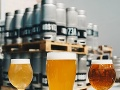Beer Fest Žilina prinesie