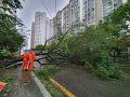 VIDEO Južnú Kóreu zasiahol tajfún Tapah, bez elektriny je 28-tisíc domácností