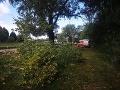 Pád stromu následkom silného vetra neprežila jedna maloletá osoba.