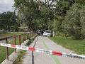 K stromu, ktorý v Nitre zabil chlapca, sa nikto nehlási: Každý odmieta priznať zodpovednosť