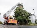 Vietor odrezal v Česku od elektriny desaťtisíce domácností, v Nemecku strom zabil vodiča auta