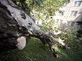 Silný vietor zasiahol aj Poľsko, tragicky zahynul jeden človek