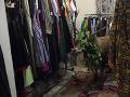 Predavačka neverila vlastným očiam: FOTO Do obchodu jej vošiel urastený jeleň