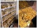 Skorumpovaný úradník šokoval: VIDEO Dom plný zlata a peňazí, z úplatkov najbohatší muž krajiny