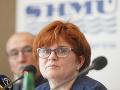 Najsuchším mesiacom bol zatiaľ apríl: Najviac postihnuté sú južné oblasti Slovenska