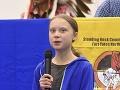 Veľká pocta pre Thunbergovú: Pomenovali po nej nový druh chrobáka