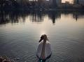 Labutí príbeh z Bratislavy roztápal srdcia: Po tragédii radostná správa, ľudia sa nestačia čudovať!