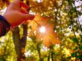 November bol doteraz mimoriadne teplý: Bude asi najteplejší od roku 1961