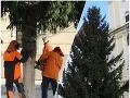 Bratislavu už zdobí vianočný stromček: VIDEO Je sa na čo tešiť, mesto prichádza s novým konceptom trhov