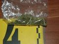 Polícia zasahovala u mladíka (23): Zaistili stovku dávok drog na FOTO, stihli ho už obviniť