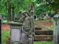 Olšanské cintoríny