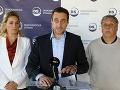 Demokratická strana pôjde do parlamentných volieb sama