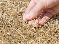 Na Slovensku úraduje výrazné sucho: SHMÚ eviduje zhoršenú situáciu