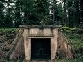 Nevídaný objav v poľskom jadrovom bunkri: Vedci narazili na mega kolóniu!