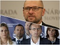 Richard Sulík a členovia Demokratickej strany