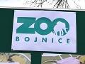 MIMORIADNE V zoologickej záhrade v Bojniciach potvrdili vtáčiu chrípku