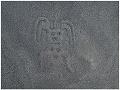 Vedci objavili na 140 nových obrazcov na planine Nazca v Peru.