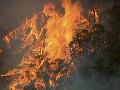 Obyvateľom Austrálie došla trpezlivosť: V súvislosti s požiarmi kritizovali premiéra