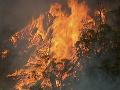 Katastrofálna situácia v Austrálii: Objem zrážok nedokáže zastaviť rozsiahle požiare