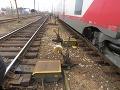 Tragická zrážka dvoch osobných vlakov v Egypte: Hlásia 13 zranených