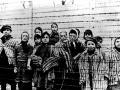 Na archívnej snímke z januára 1945 deti stoja za ostnatým drôtom v nacistickom koncentračnom  tábore v poľskom Osvienčime tesne po tom, ako tábor oslobodili sovietske jednotky, FOTO: TASR/AP