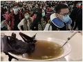 Smrtiaci vírus desí celý svet, prvá nákaza z polievky: Nechutné VIDEO! Netopier ako delikatesa