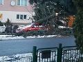 Na snímke od čitateľa je spadnutý strom v obci Predajná, okres Brezno.