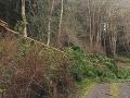 Príroda nevyčíňa len na Slovensku: Nepriaznivé počasie v Európe, vyhasli dva ľudské životy