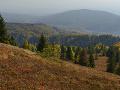 Slovensko sa zimy stále nedočká! Teploty vystúpajú poriadne vysoko