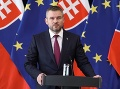 Vláda schválila zmenu a vyjadrila súhlas s Istanbulským dohovorom