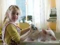 Dakota Fanning - Šarlotina pavučinka (2006)