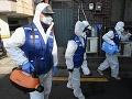 Biely dom vymenoval koordinátorku pre boj proti šíreniu koronavírusu v USA