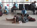 Situácia na letisku Soekarno-Hatta v Indonézii. Veriaci, ktorí mali v pláne odlet do Saudskej Arábie, sa tam zrejme nedostanú, keďže krajina cudzincom zakázala vstup.