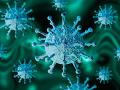 KORONAVÍRUS Filtračný stan pri nemocnici v Trnave neslúži na testovanie na ochorenie COVID-19