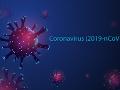 KORONAVÍRUS Jednoduchá izolácia nového vírusu vysvetľuje i ľahkosť jeho šírenia, tvrdí SAV